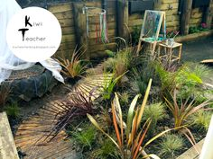 Its spring, get outside! (Our new sensory garden)