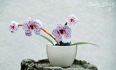 KreativStanz Blumen Orchideenzweig Orchideenblüten Orchideen von Stampin' Up! orchids #stampinup #flowers http://kreativstanz.bastelblogs.de/