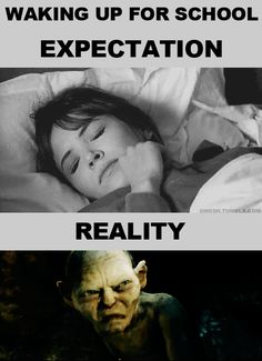 expectations vs reality waking up for school. the internet just knows us so well :D