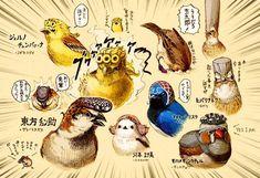 空条チュン太郎に文鳥院!?「ジョジョの奇妙な冒険」のキャラクターを小鳥化したイラストが話題 | ARTIST DATABASE