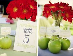 apples, gerbera daisies