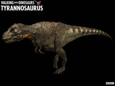 Walking with Dinosaurs is a BBC-Discovery Channel co-produced Speculative Documentary series focusing on. dinosaurs, using state-of-the-art … Dinosaurs Series, All Dinosaurs, Walking With Dinosaurs, Jurassic World, Jurassic Park, Short Faced Bear, American Lion, Tv Tropes, Dinosaurs