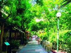 Κουκάκι: Βόλτα σε μια από τις πιο ιστορικές γειτονιές της Αθήνας Athens, Greece, Sidewalk, Walkways, Athens Greece, Pavement, Grease