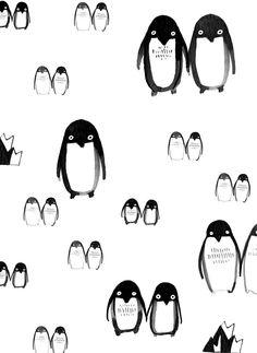 Penguin Illustration for Honest Chocolate | Ruschka du Toit