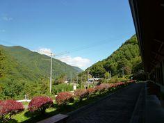 Fu-ketsunosao, Matsumoto Nagano Japan (Ottobre) Nagano Japan