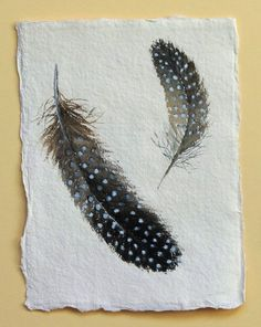 Watercolour guinea fowl feather original painting illustration study spotty spotted feather. £30.00, via Etsy.