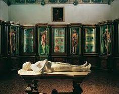 museo di palazzo poggi, bologna