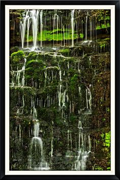 https://flic.kr/p/ocQcDF | Falling Waters | Waterfall at Cove Springs in Frankfort, KY.