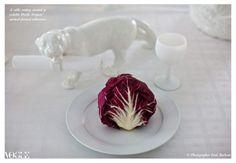 Emilie Kröner's 'White Animal Life'.