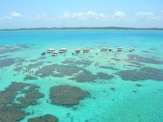 Maragogi, um paraíso Alagoano-: O município de Maragogi está localizado na região do litoral norte de Alagoas a 125 km de Maceió na divisa dos Esta...