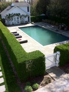 Trimmed Hedges With White Wood Picket Gate Home Design Ideas Pool Fence - Bepflanzung Swimming Pool Designs, Swimming Pools, Outdoor Pool, Outdoor Gardens, Indoor Garden, Outdoor Spaces, Pool Fence, Pool Gates, Fence Around Pool