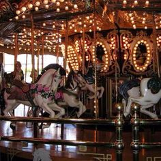 The Horses Are SO PRETTY!! I Absolutely Love Carousels