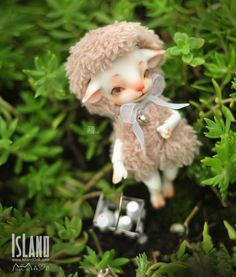 Nuan Nuan, 10.5cm Island Doll (Forest Island) Pet Doll - BJD Dolls, Accessories - Alice's Collections