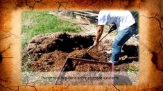 SOLO - FERTILIZANTES - COMPOSTAGEM - Aprenda a fazer compostagem 100% vegetal e gere seu próprio adubo orgânico