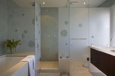 toilet glass doors. i like the water closet glass door