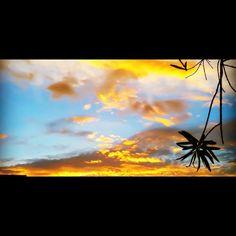 Photography: Just a little FL sunset