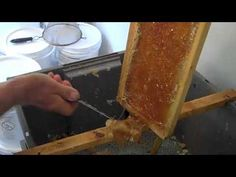 Extracting Honey on the Cheap. I really want to get a honey hive started Hives And Honey, My Honey, Honey Bees, Harvesting Honey, Bee Friendly Plants, Bee Hive Plans, Beekeeping For Beginners, Bee Pollen, Bee Keeping