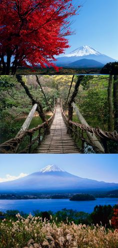 Few countries in Asia boasts such dramatic natural diversity and such a range of hiking opportunities as Japan