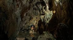 Image of the stalactites in the magnificent Wedding Cathedral inside of the Ngarua Caves in Takaka Hill