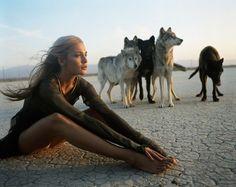 #wolf #dessert #wolfpack #wolves