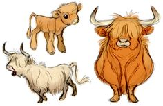 some of the concepts for my senior film I've been doing. some highland cows!