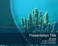 Scuba Diving Power Point Template Is A Free PPT That You Can Download For Sport Presentations And Techniques