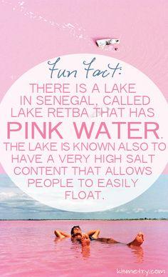 A Pink Lake in Senegal. #bucketlist                                                                                                                                                                                 More