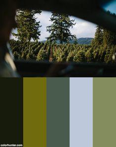 Riding A Car Color Scheme from colorhunter.com