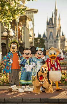 24-Hour Events Kick Off Summer at Disney Parks tami@goseemickey.com