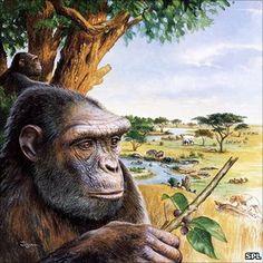 7 million years ago.