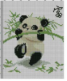 O panda e o bambú