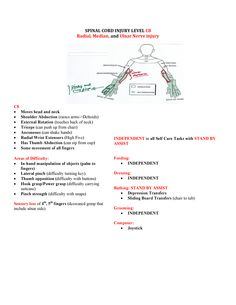 Spinal Cord Injuries c8