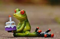 5 original birthday cakes for teenagers - Geburtstag Happy Birthday Frog, Happy Birthday Cake Images, Happy Birthday Greetings, Birthday Photos, Funny Frogs, Cute Frogs, Cakes For Teenagers, Sapo Meme, Frog Wallpaper