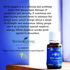 YLEO White Angelica. My fave!  Contact me to order yours or learn more about Young Living visit my site for more info www.OilLovingGirl.com   Distributor #1837948