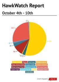 #HNCHawkWatch Report October 4th through 10th #HitchcockNatureCenter #LoessHills