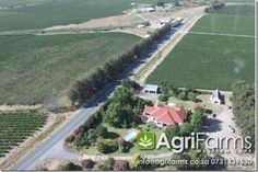 This is really very good high potential farm. The grapes go to Aan de Doorns Wine Cellar. Irrigation Pumps, Water Irrigation, Pump House, Chenin Blanc, 6 Month Olds, My True Love, Sauvignon Blanc, Maine House, Wine Cellar