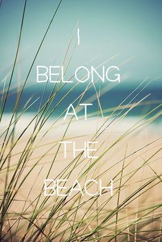 You belong at the beach! Louise Hay f464d3d8ee007