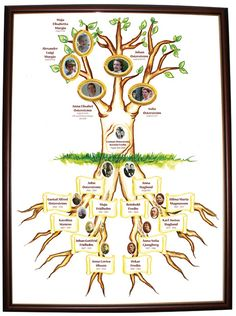 Genea Murgia's Family Tree Gallery