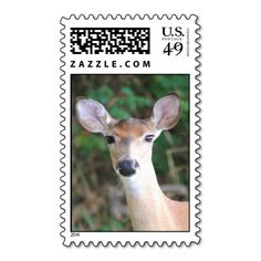>>>Are you looking for          Baldy Deer Stamps           Baldy Deer Stamps lowest price for you. In addition you can compare price with another store and read helpful reviews. BuyShopping          Baldy Deer Stamps today easy to Shops & Purchase Online - transferred directly secure and t...Cleck Hot Deals >>> http://www.zazzle.com/baldy_deer_stamps-172583478446925888?rf=238627982471231924&zbar=1&tc=terrest