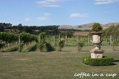 vynfields vinyard in martinborough, new zealand Wine Tasting, Beautiful Gardens, New Zealand, Golf Courses