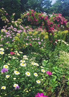 Secret Gardens....