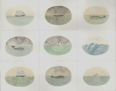 Sophie Blackall: Whales and Ships and Icebergs