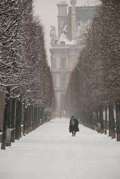 a snowy path in paris