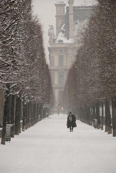 a snowy path in paris