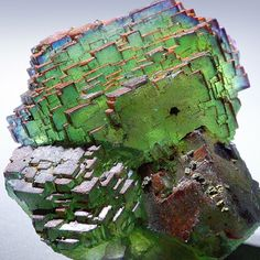 "this almost digital looking ""stepladder"" fluorite from hunan province china looks like a digital cabbage! Natural Crystals, Stones And Crystals, Natural Gemstones, Gem Stones, Minerals And Gemstones, Rocks And Minerals, Rock Collection, Beautiful Rocks, Mineral Stone"