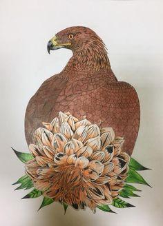 #DaisyFletcher #Birdtopia Rooster, Daisy, Owl, Bird, Animals, Animais, Animales, Animaux, Daisy Flowers