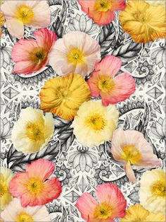 Micklyn Le Feuvre - Collage of Poppies and Pattern                                                                                                                                                                                 Mais