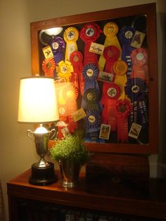 A way to display all those horsey ribbons.