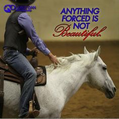 Horsemanship is a lifetime journey that you will never complete.  @Double Dan Horsemanship