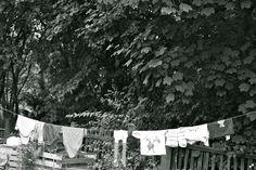 Gartenleben im August  #Kleingarten #Berlin #Pankow #UrbanGardening Berlin Pankow, Urban Gardening, Life, Apartment Gardening, Urban Homesteading